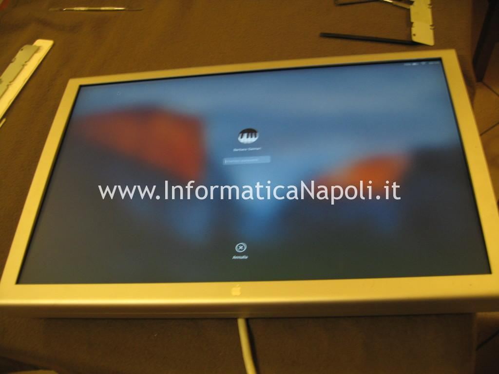 Apple Cinema HD Display 13 A1082 riparato funzionante