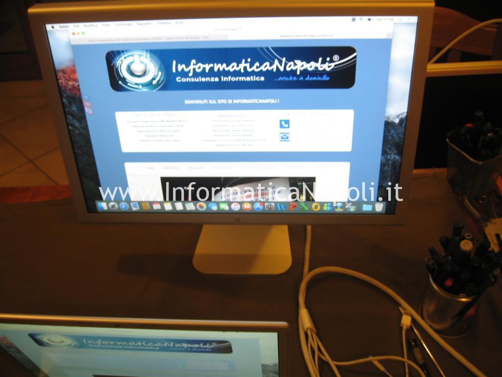 Apple Cinema HD Display 13 A1082 riparato funziona