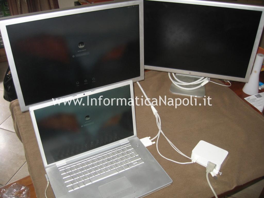 assistenza Apple Cinema HD Display 13 A1082 riparato funziona