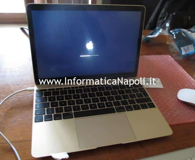 Apple MacBook 12 A1534 EMC 2746 | 2991 riparato sbloccato